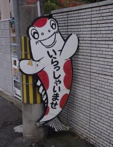 3-2)関西で金魚1dayツアー(京阪錦鯉センターは楽しい!)