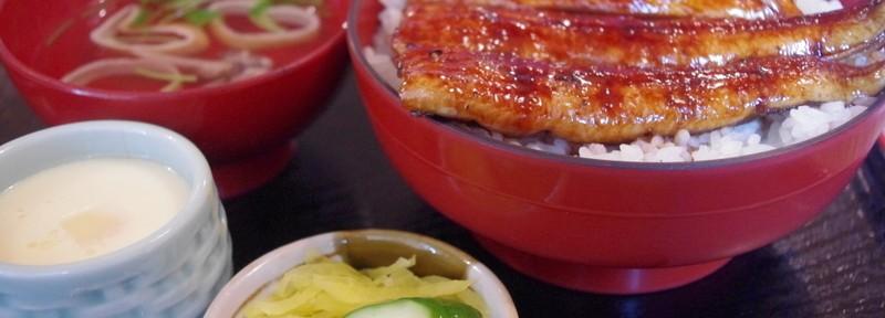 (9)金魚ツアー報告 最終日は静岡~(゚Д゚;)