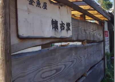 魚種どんだけ!びれっじふぃーるどさん!(21)関東・新潟 金魚旅2012秋