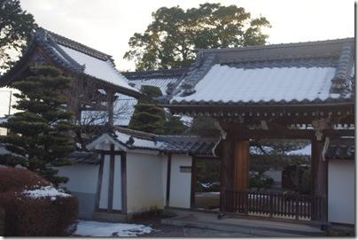 蝶尾屋さんに行ったよぉ!(6)関西ズンドコ金魚旅