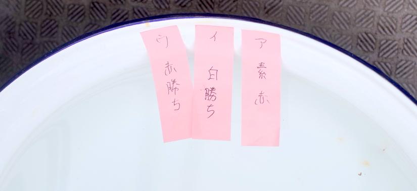 媛らん会 今年ラストの当歳研究会!